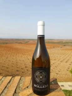 Baltas vynas Hacienda Molleda Blanco Garnacha