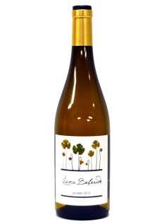Baltas vynas Luna Beberide Godello