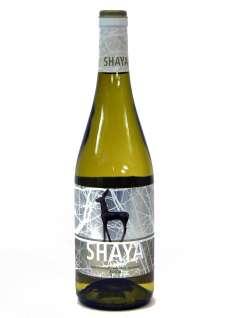 Baltas vynas Shaya