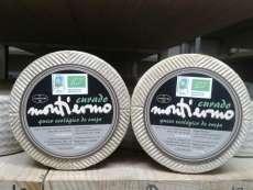 Sūris Montiermo